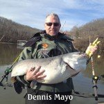 dennis-mayo  Mississippi River Monsters Tournament dennis mayo 150x150